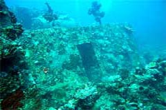 Wreck Diving Coron northern Palawan