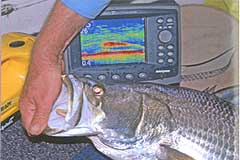 Photograph, Marine Electronics Humminbird
