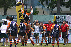 5 Nation Rugby Nomad Sports Club