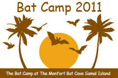 Image: year of the bat samal bat camp logo