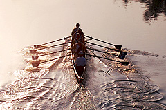 Image: Rowing on the Pasig River